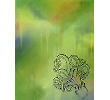 Octopus - Green and Blue Background Photographic Print