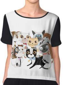 Cartoon Pets So Many Cats Cat Lover Chiffon Top