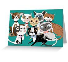 Cartoon Pets So Many Cats Cat Lover Greeting Card