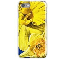 Three Amigos - HDR iPhone Case/Skin