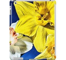 Three Amigos - HDR iPad Case/Skin