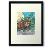 Tig in the Jungle  Framed Print
