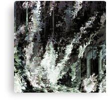 BW 021 Canvas Print