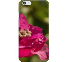Springs a Poppin' iPhone Case/Skin
