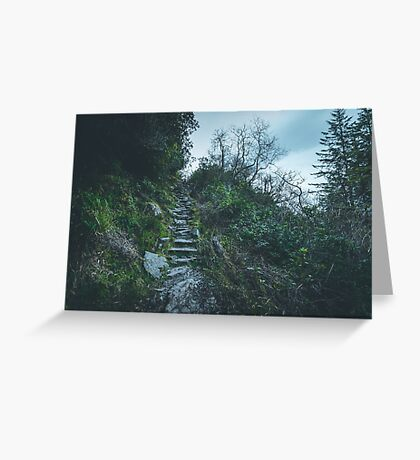 Ascending  III Greeting Card
