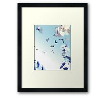 Bird sky Framed Print