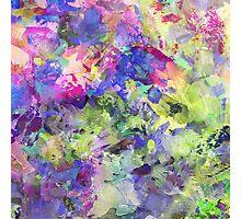 Garden Of Colour Photographic Print