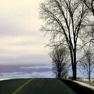 The Edge ! by Elfriede Fulda