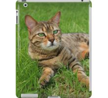 Cat Naps iPad Case/Skin