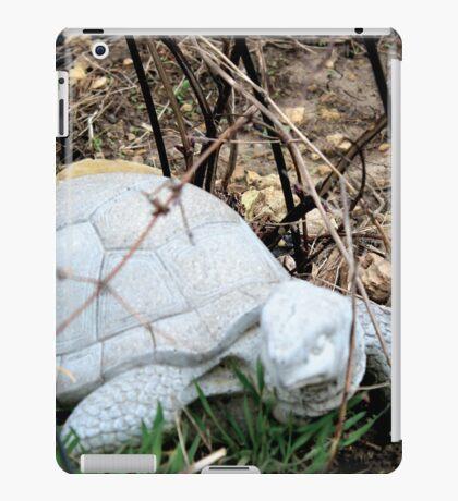 Turtles! iPad Case/Skin