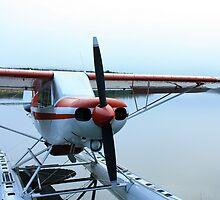 Bush Plane by rwhitney22