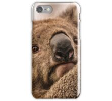 Koala 3 iPhone Case/Skin