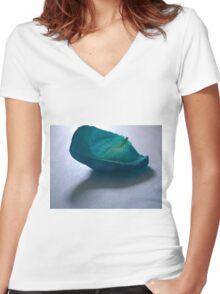 Blue Rose Petal Women's Fitted V-Neck T-Shirt