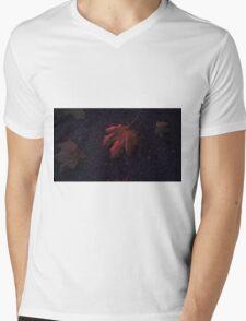 Leaves Mens V-Neck T-Shirt