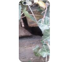 The Urban Hiding Place iPhone Case/Skin