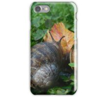 Snail and flower iPhone Case/Skin
