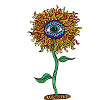 Psychedelic Sunflower - Exciting New Art - Doona is my favourite! Photographic Print