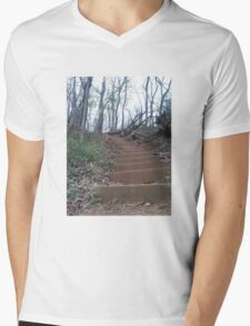 Enchanted Woods Mens V-Neck T-Shirt