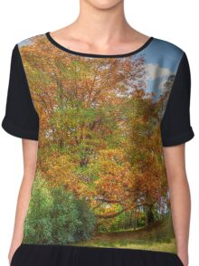 The Mount Wilson Collection - Autumn 2016 (2) Women's Chiffon Top
