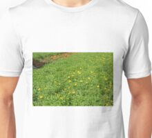 Green meadow with yellow flowers. Unisex T-Shirt