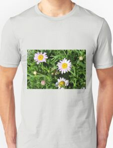 Pink beautiful flowers in the green grass. T-Shirt