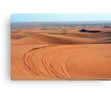 Sand dunes in the desert. Canvas Print