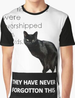 In Ancient Times Cats Were Worshipped As Gods Graphic T-Shirt