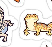 chub gecko babies Sticker