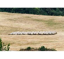 hilly landscape with hay Photographic Print