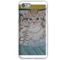 Kittens in a Box iPhone Case/Skin