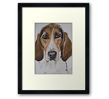 Rescue Dog, France II Framed Print