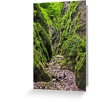A beautiful view of a narrow wild canyon Greeting Card