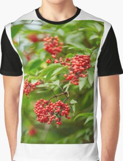 Red Rowan tree berries on branches Graphic T-Shirt