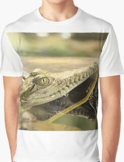Baby Crocodile Graphic T-Shirt