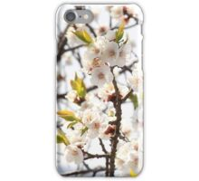 Flora - Great Wall of China iPhone Case/Skin