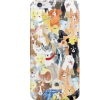 Dogs dogs dogs iPhone Case/Skin
