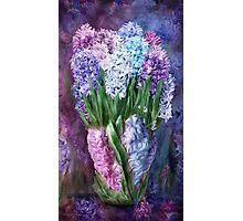 Hyacinths In Hyacinth Vase 1 Photographic Print
