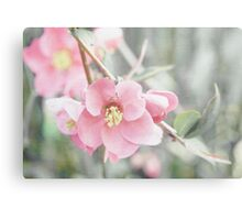 Textured Quince Blossoms Canvas Print