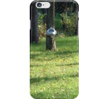 Extraordinary suggestion.... iPhone Case/Skin