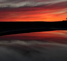 Sunset in Newport Beach by DARRIN ALDRIDGE