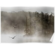 Morning on Costello Creek in Algonquin Park Poster