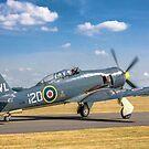 Hawker Sea Fury T.20S VX281 G-RNHF by Colin Smedley