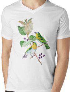 TIR-Brazil-Bird-2 Mens V-Neck T-Shirt