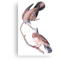 TIR-Brazil-Bird-3 Canvas Print