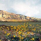 Dawn in Death Valley by RC deWinter