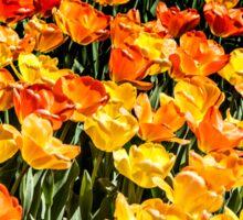 Tulip Wave Sticker