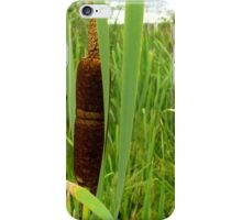 The bulrush. iPhone Case/Skin