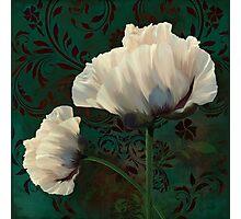 Poppies and Verdigris, dramatic cream poppy floral art Photographic Print