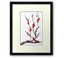 Pink flowers of sakura  Framed Print