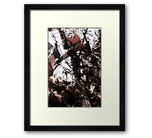 Forest Growth Framed Print